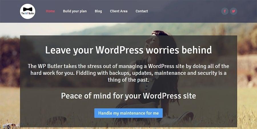 Wordpress bakım eklentileri